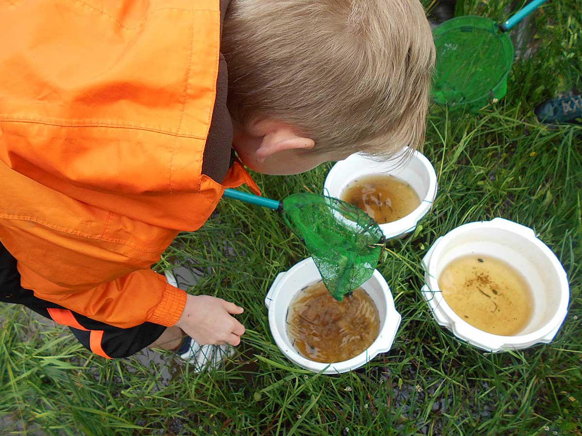 Chère Don Isac : Sensibiliser aux enjeux de l'eau à l'échelle d'un bassin versant