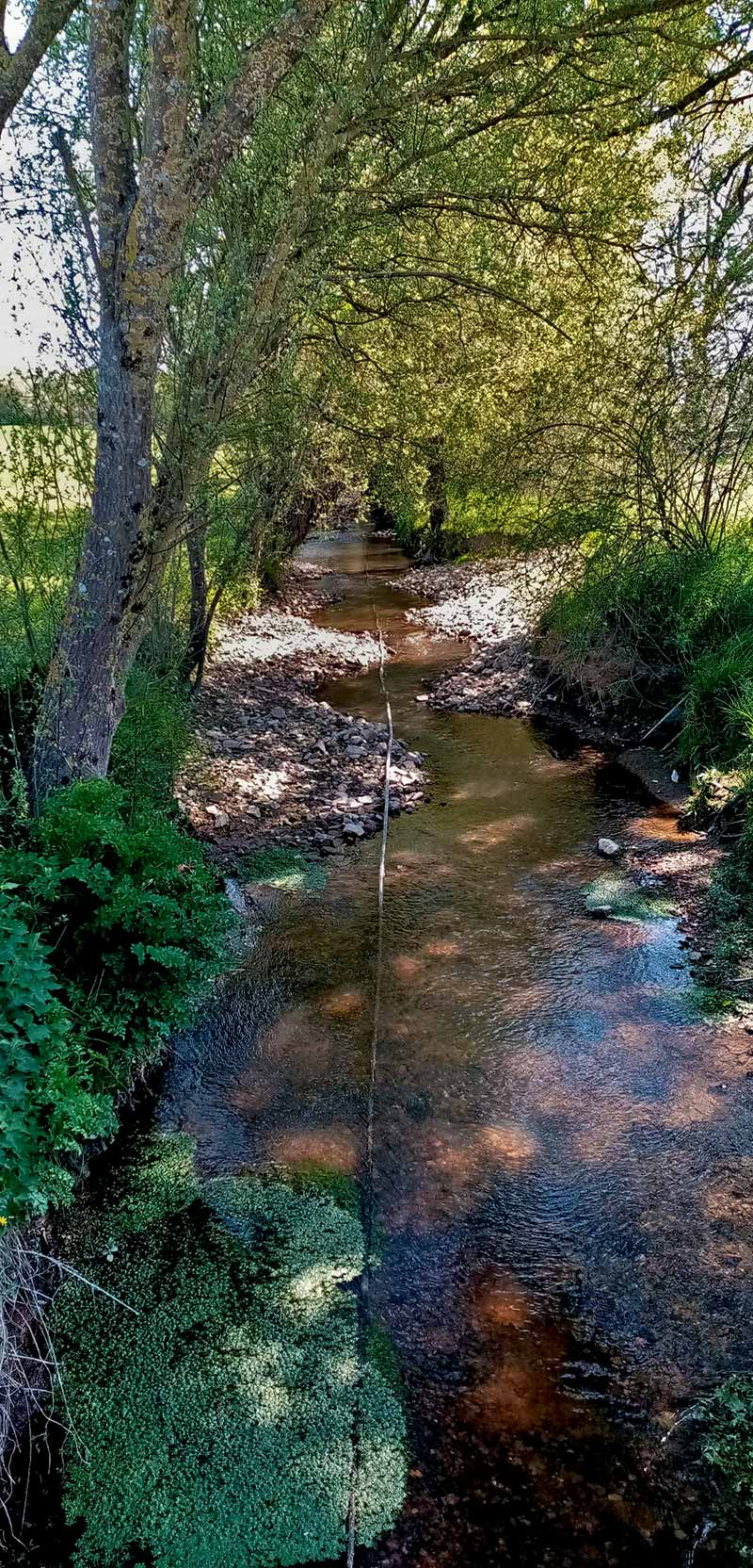 resRestauration ruisseau du Pas Guillaume Derval